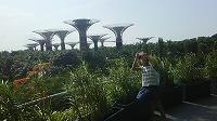 �E植物園にて(後ろのタワーは吊構造の連絡通路がエキサイティングでした!).jpg